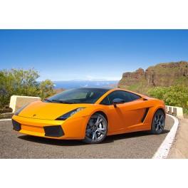 Puzzle, Lamborghini Galardo, 120 elementów, Castorland